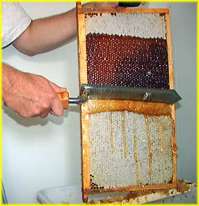Uncapping a honeycomb